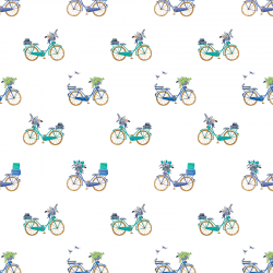 Bicycle 601