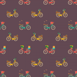 Bicycle 901