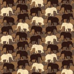 AFRICA 901