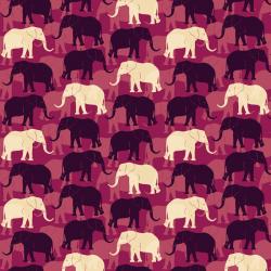 AFRICA 301