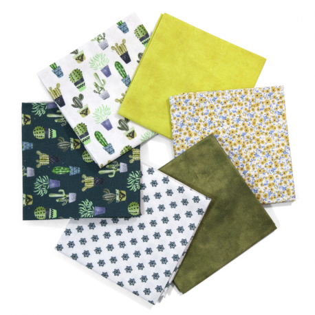 FAT QUARTER SUCCULENTS - PACK 6 UDS