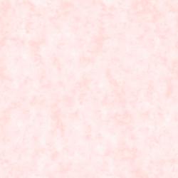 IGLU 301