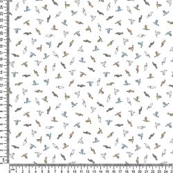 PINOCHO BIRDS 101