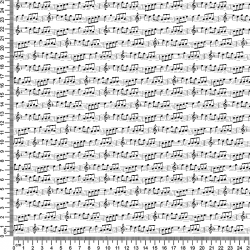 MUSICAL NOTES 101